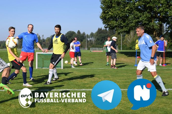 BFV, Trainingswissen, Trainer-Newsletter
